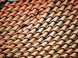 Tile roof shingles cracked and broken
